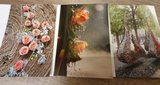 Set 3 postkaarten Hoogstraten in Groenten en Bloemen 2017_